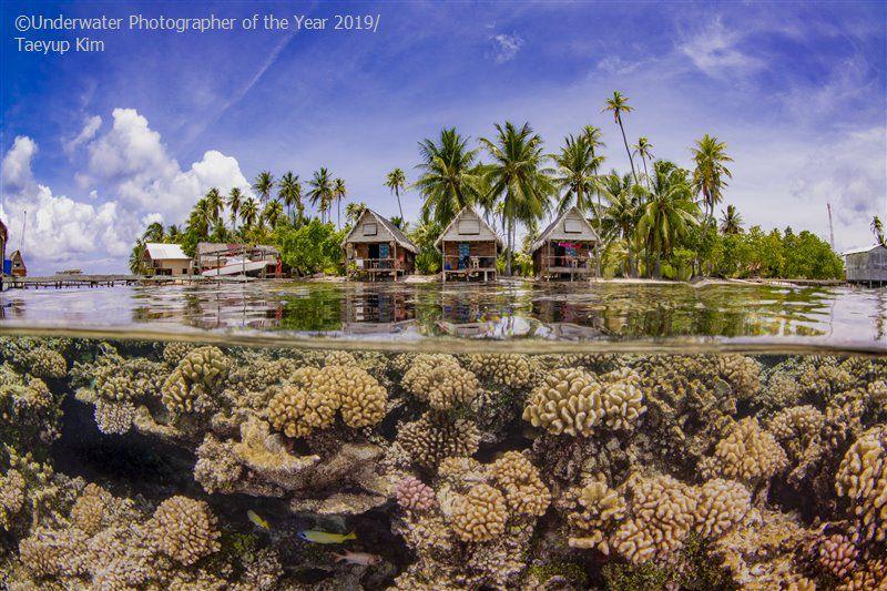 Εξωτικό νησί ύφαλος