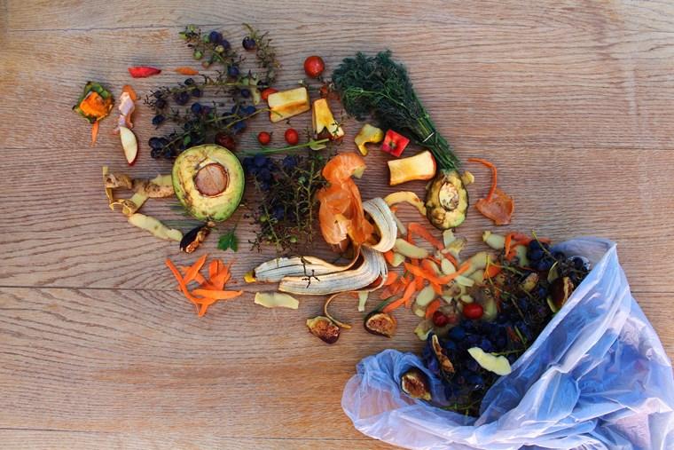 Φαγητό Σκουπίδια