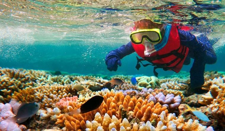 Ο μεγάλος κοραλλιογενής ύφαλος (Αυστραλία)