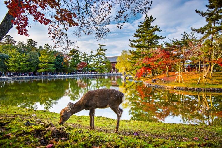 10 ξεχωριστοί φθινοπωρινοί προορισμοί σε κάθε γωνιά της Γης